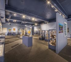 roger-williams-museum-lopco-contracting-003