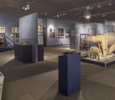 roger-williams-museum-lopco-contracting-005